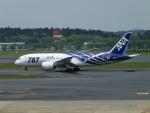 エルさんが、成田国際空港で撮影した全日空 787-8 Dreamlinerの航空フォト(写真)