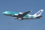 sepia2016さんが、成田国際空港で撮影した全日空 A380-841の航空フォト(写真)