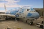 職業旅人さんが、ダニエル・K・イノウエ国際空港で撮影した全日空 A380-841の航空フォト(写真)