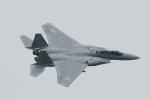 bakさんが、岐阜基地で撮影した航空自衛隊 F-15DJ Eagleの航空フォト(写真)