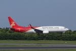 mogusaenさんが、成田国際空港で撮影した深圳航空 737-87Lの航空フォト(写真)