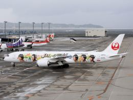 White Pelicanさんが、中部国際空港で撮影した日本航空 787-9の航空フォト(写真)