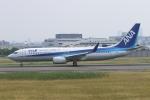 deideiさんが、伊丹空港で撮影した全日空 737-881の航空フォト(写真)