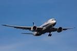 よんろくさんが、羽田空港で撮影した全日空 787-8 Dreamlinerの航空フォト(写真)