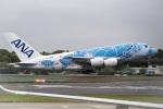 xingyeさんが、成田国際空港で撮影した全日空 A380-841の航空フォト(写真)