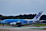 吉田高士さんが、成田国際空港で撮影した全日空 A380-841の航空フォト(写真)