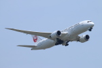 ceskykrumlovさんが、成田国際空港で撮影した日本航空 787-8 Dreamlinerの航空フォト(写真)