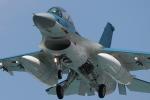 マクロス野郎さんが、岐阜基地で撮影した航空自衛隊 F-2Bの航空フォト(写真)