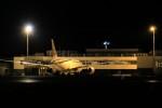 HNANA787さんが、花巻空港で撮影した日本航空 787-8 Dreamlinerの航空フォト(写真)