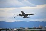HK Express43さんが、伊丹空港で撮影した全日空 A321-272Nの航空フォト(写真)