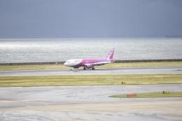 tamtam3839さんが、中部国際空港で撮影したピーチ A320-200の航空フォト(写真)