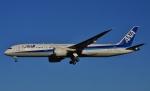 鉄バスさんが、成田国際空港で撮影した全日空 787-9の航空フォト(写真)
