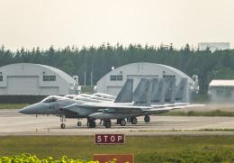 Cygnus00さんが、千歳基地で撮影した航空自衛隊 F-15J Eagleの航空フォト(飛行機 写真・画像)