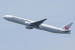 zettaishinさんが、ジョン・F・ケネディ国際空港で撮影した日本航空 777-346/ERの航空フォト(飛行機 写真・画像)