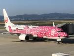 東亜国内航空さんが、関西国際空港で撮影した日本トランスオーシャン航空 737-8Q3の航空フォト(写真)