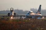 スカルショットさんが、岐阜基地で撮影した航空自衛隊 F-2Bの航空フォト(写真)
