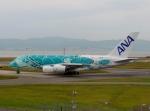 東亜国内航空さんが、関西国際空港で撮影した全日空 A380-841の航空フォト(写真)