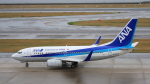 Cassiopeia737さんが、中部国際空港で撮影した全日空 737-781の航空フォト(写真)