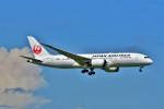 Hiro Satoさんが、スワンナプーム国際空港で撮影した日本航空 787-8 Dreamlinerの航空フォト(写真)
