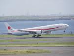 蒲田っ子さんが、羽田空港で撮影した航空自衛隊 777-3SB/ERの航空フォト(写真)