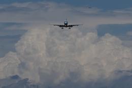 木人さんが、成田国際空港で撮影したマンダリン航空 ERJ-190-100 IGW (ERJ-190AR)の航空フォト(写真)