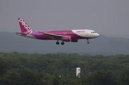 senchouさんが、新千歳空港で撮影したピーチ A320-214の航空フォト(写真)