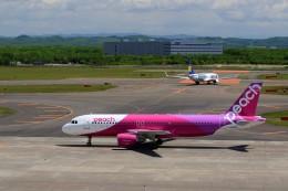 ☆ライダーさんが、新千歳空港で撮影したピーチ A320-214の航空フォト(写真)