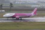 プルシアンブルーさんが、仙台空港で撮影したピーチ A320-214の航空フォト(写真)
