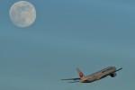 おかめさんが、羽田空港で撮影した日本航空 777-289の航空フォト(写真)