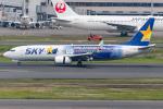 Tomo-Papaさんが、羽田空港で撮影したスカイマーク 737-81Dの航空フォト(写真)