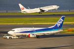 SGR RT 改さんが、羽田空港で撮影した全日空 737-54Kの航空フォト(写真)