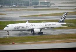flying_horseさんが、羽田空港で撮影したエアバス A350-941の航空フォト(飛行機 写真・画像)