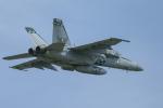 mameshibaさんが、厚木飛行場で撮影したアメリカ海軍 F/A-18E Super Hornetの航空フォト(写真)