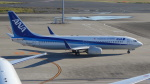 AE31Xさんが、羽田空港で撮影した全日空 737-881の航空フォト(写真)