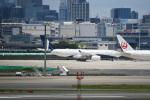 シュウさんが、羽田空港で撮影したコムルックス・アルバ A330-243の航空フォト(写真)