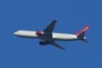 ウネウネさんが、横田基地で撮影したオムニエアインターナショナル 767-3Q8/ERの航空フォト(飛行機 写真・画像)