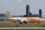 多楽さんが、成田国際空港で撮影したスクート 787-9の航空フォト(写真)