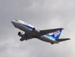 むらさめさんが、新千歳空港で撮影したANAウイングス 737-5L9の航空フォト(写真)