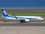 FT51ANさんが、羽田空港で撮影した全日空 737-881の航空フォト(写真)