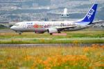 sshzeさんが、伊丹空港で撮影した全日空 737-881の航空フォト(写真)