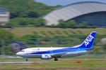tsubameさんが、福岡空港で撮影したANAウイングス 737-54Kの航空フォト(写真)