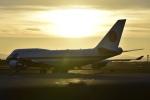 Orange linerさんが、新千歳空港で撮影した航空自衛隊 747-47Cの航空フォト(写真)