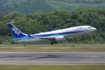 hideohさんが、広島空港で撮影した全日空 737-881の航空フォト(写真)