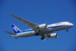 JA8037さんが、羽田空港で撮影した全日空 787-8 Dreamlinerの航空フォト(写真)