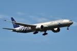 kina309さんが、成田国際空港で撮影したKLMオランダ航空 777-306/ERの航空フォト(写真)