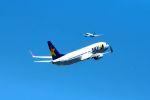 まいけるさんが、羽田空港で撮影したスカイマーク 737-8ALの航空フォト(写真)