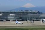 メンチカツさんが、羽田空港で撮影した全日空 787-8 Dreamlinerの航空フォト(写真)
