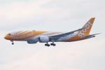 代打の切札さんが、関西国際空港で撮影したスクート 787-8 Dreamlinerの航空フォト(写真)