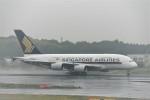 エルさんが、成田国際空港で撮影したシンガポール航空 A380-841の航空フォト(写真)