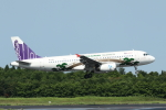 mogusaenさんが、成田国際空港で撮影した香港エクスプレス A320-232の航空フォト(写真)